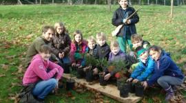 Waldkindergeburtstage m. Umweltschutzbezug